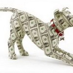 6 of the Luckiest Four-Legged Lottery Winners