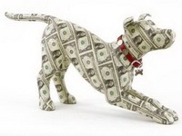 5 of the Luckiest Four-Legged Lottery Winners
