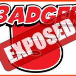 Badger 5 Wisconsin Exposed — Great Pick for People who Want Favorable Odds